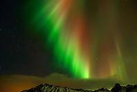 Nordlicht-Lofoten