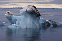 Eisberg/Arktis