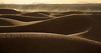 Sanddünen in der Sahara_1
